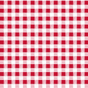 gingham - picnic red