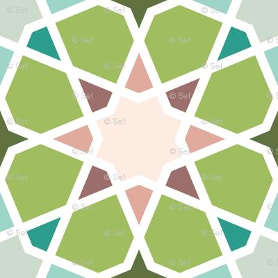 04126554 : S84 E21 : oolong stars