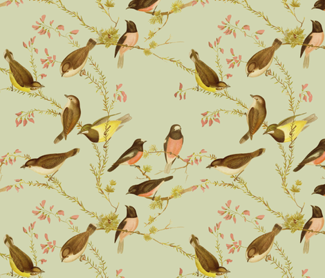 Birds of Australia ~ Robins and Gerygones ~ Sylvan  fabric by peacoquettedesigns on Spoonflower - custom fabric