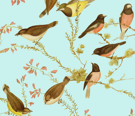 Birds of Australia ~ Robins and Gerygones ~ Tuilleries  fabric by peacoquettedesigns on Spoonflower - custom fabric