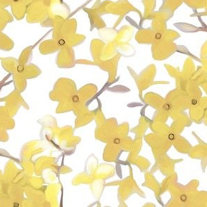 Forsythia on White in Muted Tones