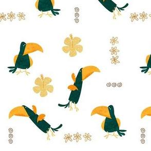 Island Birds