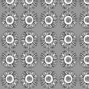 Sunflower Dark Grey
