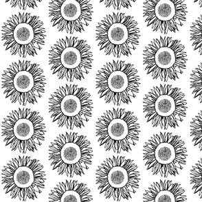 Sunflower Black