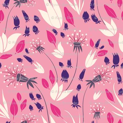 Fuchsia Pink Dandelions