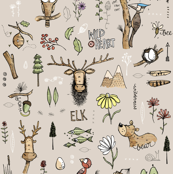 Wild Elk - Colour