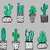 plants // potted plants cactus pots plants cacti succulents