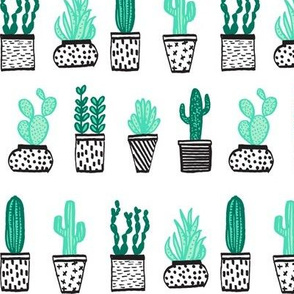 cactus // potted plants succulents plants houseplants tropical summer exotic