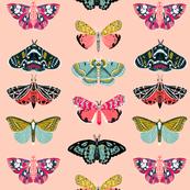 moths // pastel mint insect butterflies spring garden print