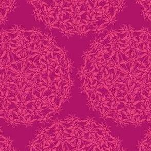 Allium Hex Pink on Pink