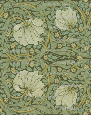 William Morris ~ Pimpernel ~ Original ~ Border wallpaper  peacoquettedesigns  Spoonflower