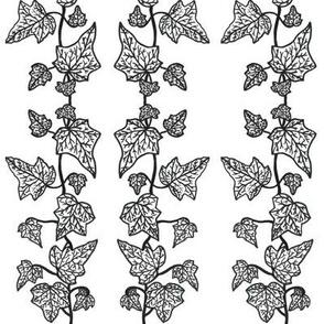 Monochrome Ivy
