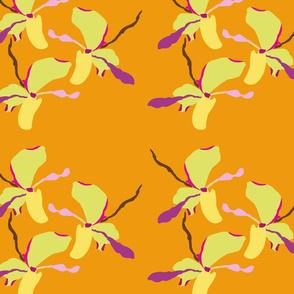 orquid_orange