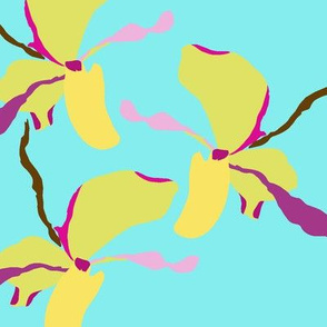 Teal_orchids