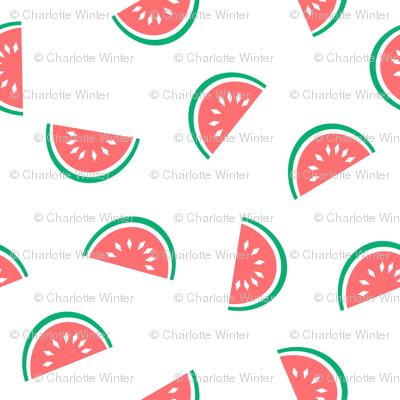 watermelon summer fruit design with white background