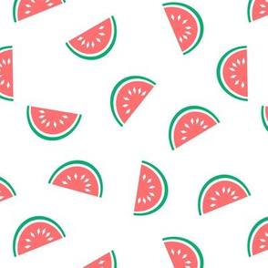 watermelon summer fruit design with white background