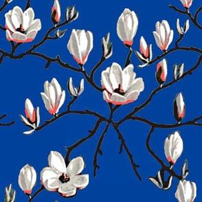 Magnolia blossom,   flower garden