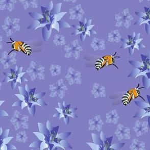 Australian Native Blue Banded Bees