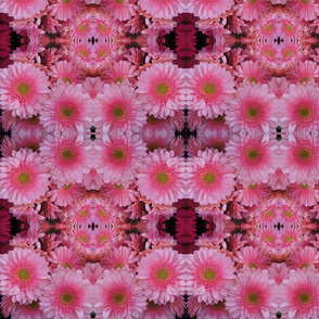 pink flower caleidoscope