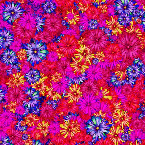 Rchamps_de_fleurs_rouge_violet_ok_shop_preview