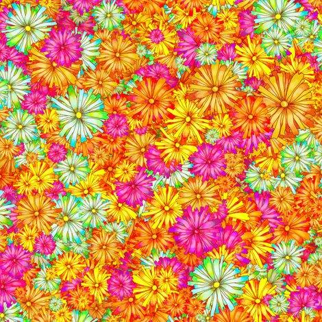 Rchamps_de_fleurs_orange_lumiere_ok_shop_preview