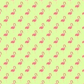Preppy Flamingo Pistachio