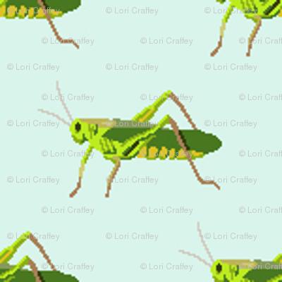 Preppy Grasshopper Spa