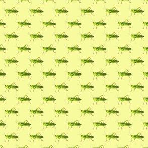 Preppy Grasshopper Yellow