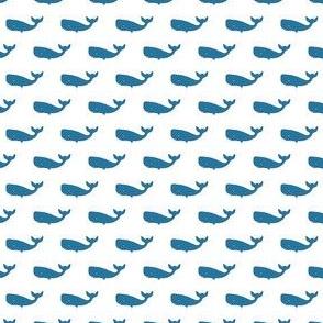 Preppy Whale White