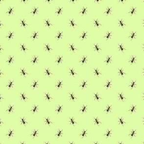 Preppy Ant Grass Green
