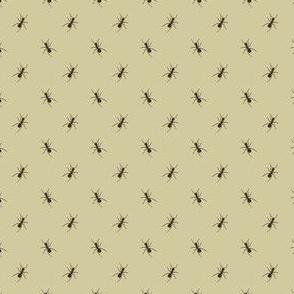 Preppy Ant Khaki