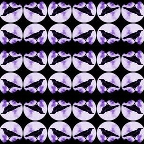 Crows (with purple)