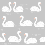 swans // grey gray swans pond ponds lake water girls simple elegant birds