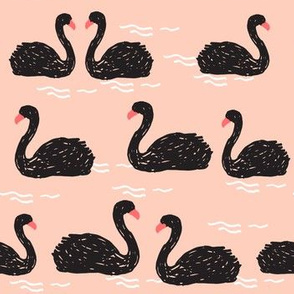 swans // black swan swans girls sweet birds