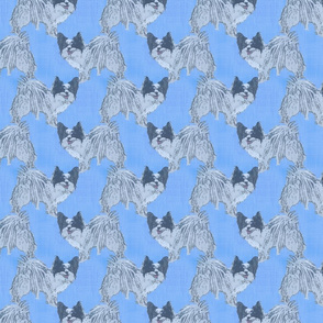 Standing Papillon - blue