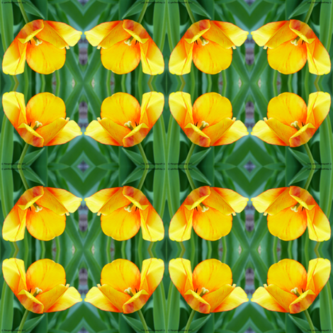 Tulip Repeat fabric by margaret_kennedy_studios on Spoonflower - custom fabric