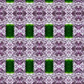 Lilac Floral - Med