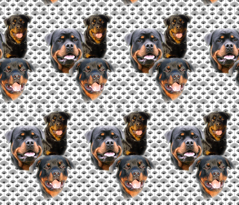 rottweilers_and_thistles fabric by dogdaze_ on Spoonflower - custom fabric