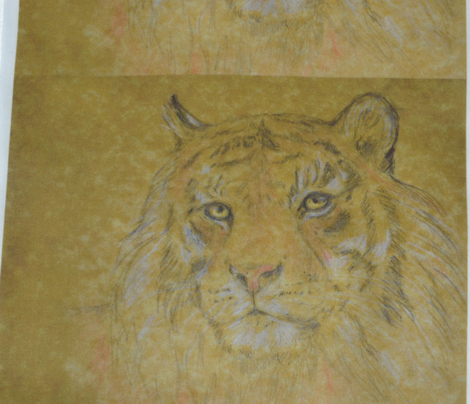 Tiger, Tinted (Sized for Linen)