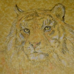Tiger, Vivid (Sized for Linen)