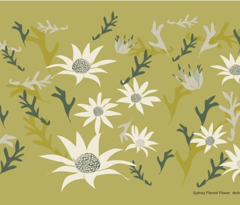 Sydney_Flannel_Flowers_quarter bush green fabric by colour_angel_by_kv on Spoonflower - custom fabric