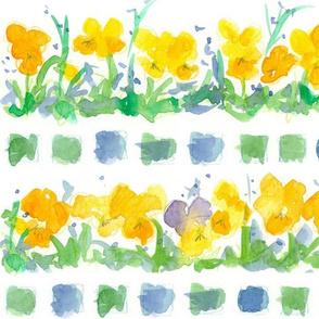 Yellow Pansies and Checks