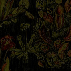 Carnivorous plants engraving tapestry