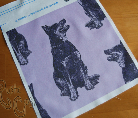 Sitting Australian cattle dog - purple