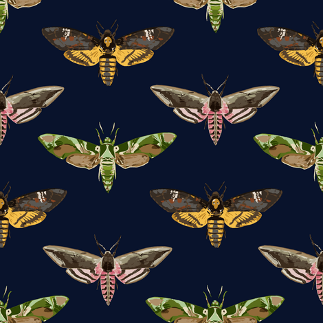 Hawk Moths 1 fabric by thomas_henderson on Spoonflower - custom fabric