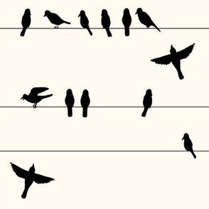 Crow line