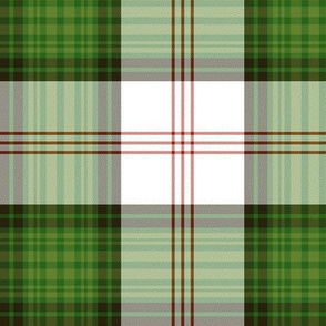 Ross clan hunting dress tartan