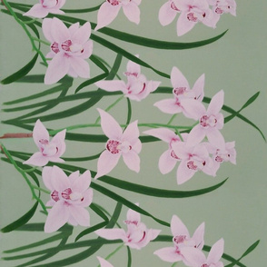 orchid painting border