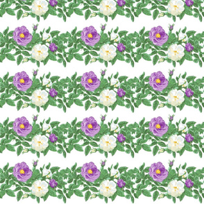 6x4_leaves_purple_white_centered_more_leaves_white