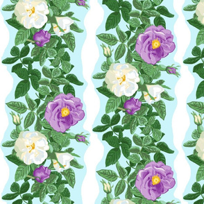 Purple_and_white_rose_border_large_12_x8